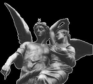aniol-napis